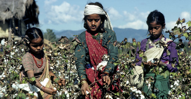 Farming for Development - UN Photo/Ray Witlin